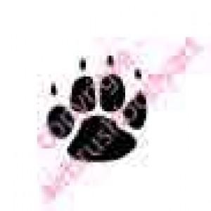 0211 paw print re-usable stencil